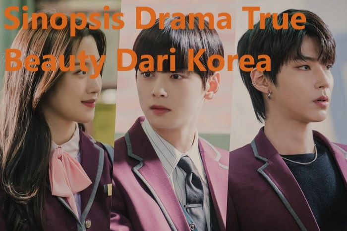 Sinopsis Drama True Beauty Dari Korea